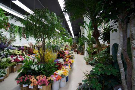 Cfd about us cfd center of floral design has been a wholesaler of natural look silk flowers plants and trees in new yorks chelsea flower market for over 20 years mightylinksfo